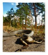 The Lunch Of Grass Snake Fleece Blanket