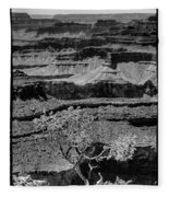 The Magnificent Grand Canyon Fleece Blanket