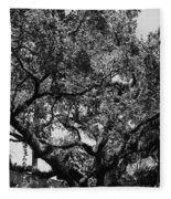 The Monastery Tree Fleece Blanket