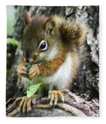 The Most Adorable Baby Squirrel Fleece Blanket