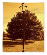 The Old Lantern In The Park Fleece Blanket
