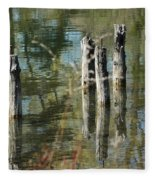 The Old Swimming Hole Fleece Blanket