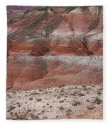 The Painted Desert  8020 Fleece Blanket
