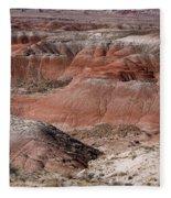 The Painted Desert  8024 Fleece Blanket