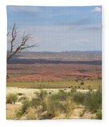 The Painted Desert Of Utah 1 Fleece Blanket