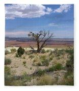 The Painted Desert Of Utah 2 Fleece Blanket