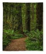 The Path Less Taken Fleece Blanket