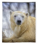 The Polar Bear Stare Fleece Blanket