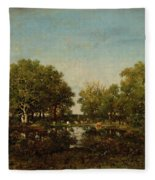 The Pool, Memory Of The Forest Of Chambord Fleece Blanket