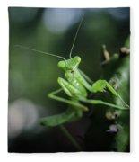 The Praying Mantis Fleece Blanket