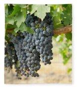 The Promise Of New Wine Fleece Blanket