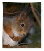 The Red Squirrel 4 Fleece Blanket