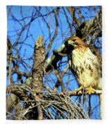 The Search Red Tail Hawk Art Fleece Blanket