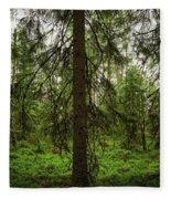 The Shadow Of The Spruce Fleece Blanket