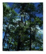 The Skyline Of Susan Creek Indian Mounds Fleece Blanket