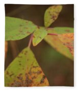 The Soft Intensity Of Fall 6210 H_2 Fleece Blanket