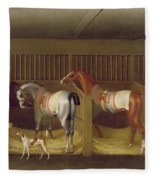 The Stables And Two Famous Running Horses Belonging To His Grace - The Duke Of Bolton Fleece Blanket