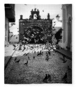 The Street Pigeons Fleece Blanket