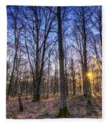 The Sun Ray Forest Fleece Blanket