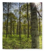 The Sun Touched Forest Fleece Blanket