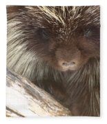 The Tender Side Of Porcupine Fleece Blanket