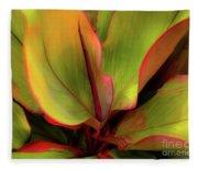 The Ti Leaf Plant In Hawaii Fleece Blanket