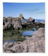 The Tidepools Of Bear Harbor Fleece Blanket