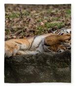 The Tiger's Rock  Fleece Blanket