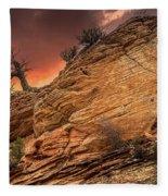The Tree Of Zion Fleece Blanket