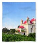 the Twelve Apostles Church Fleece Blanket