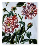 The Variegated Rose Of England Fleece Blanket