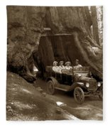 The Wawona Tree Mariposa Grove, Yosemite  Circa 1916 Fleece Blanket