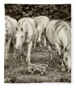 The Wild Horses Of Shannon County Mo 7r2_dsc1111_16-09-23 Fleece Blanket
