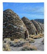 The Wildrose Charcoal Kilns Fleece Blanket