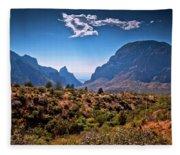 The Window In The Chisos Mountains Fleece Blanket