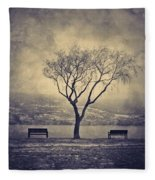 The Winter And The Benches Fleece Blanket