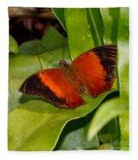 The Wizard Butterfly Fleece Blanket