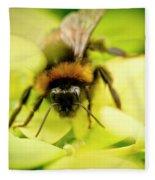 Thirsty Bumble Bee. Fleece Blanket