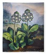Thornton: Auriculas Fleece Blanket