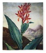 Thornton: Indian Reed Fleece Blanket
