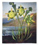 Thornton: Pitcher Plant Fleece Blanket