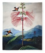 Thornton: Sensitive Plant Fleece Blanket