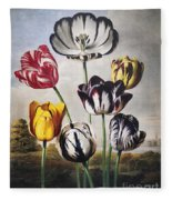 Thornton: Tulips Fleece Blanket