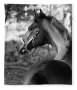 Thoroughbred - Black And White Fleece Blanket