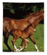Thoroughbred Chestnut Mare & Foal Fleece Blanket