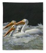 Three American Pelicans Fleece Blanket