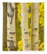 Three Autumn Aspens Fleece Blanket