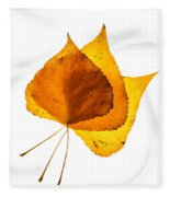 Three Backlit Cottonwood Leaves In Autumn On White Fleece Blanket