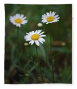 Three Daisy's Fleece Blanket
