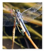 Three Dragonflies On One Reed Fleece Blanket